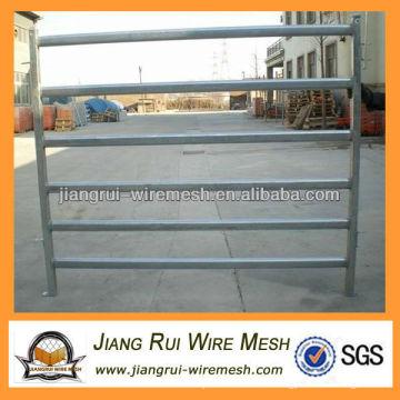horse fence (welded iron tube)