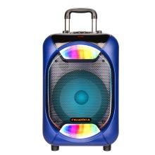 Altavoz portátil para DJ de fiesta Sony de 10 pulgadas