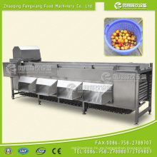 Máquina clasificadora de la patata y de la cebolla, clasificadora anaranjada