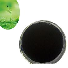 Extracto de algas con abundante potasio para alimentos saludables.