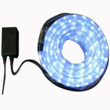 LED flexible rope lights with blue bulbs, 24, 110, 220V