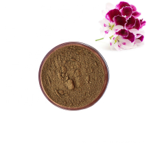 Hot Selling 100% Natural Roots of Pelargonium Sidoides Extract Powder