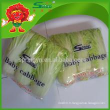 Chinese Big Baby Repolage (trois paquets) de légumes verts