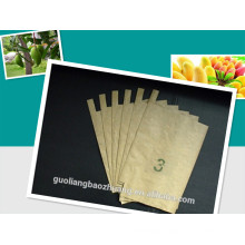 High Grade Composite Paper Ageing-Resistant Moisture-Penetrability Environmental Fruit Cultivation Paper Bag for Mango to Prevent Pesticides Pollution