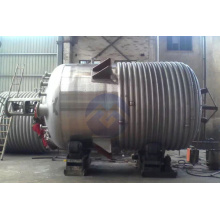 Large Capacity Stainless Steel Outer Spiral Pipe Reactor