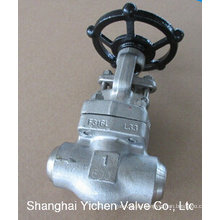 China Forged Steel Gate Valve