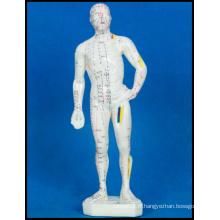 Modèle de corps humain d'acupuncture (M-1-26)