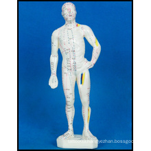 Acupuncture Human Body Model (M-1-26)
