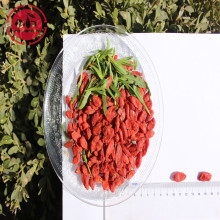 Vitaminas Low Fat Nutrition Low pesticide Goji Berries