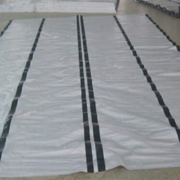 4*6m White Color PE Tarpaulin with Reinforced Bands