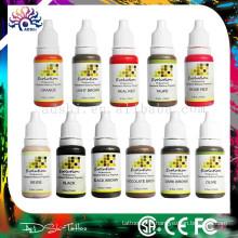 12 coloré en gros permanent maquillage permanent lèvre eyeline pigment / tatouage encre