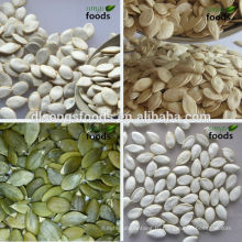 Китай Сырые Съедобные Семена Тыквы