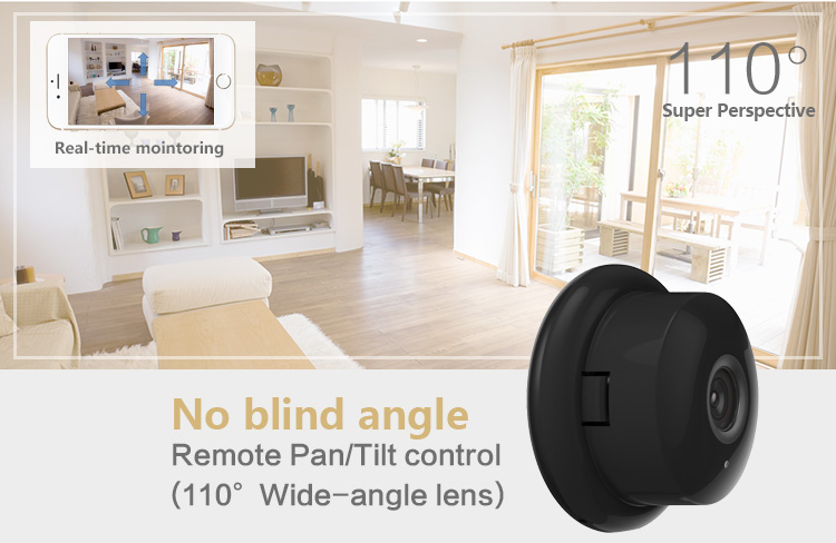 110 Degree View Angle IP Camera