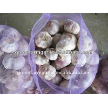 2014 китайский свежий чеснок