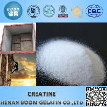 Healthcare supplement bulk supplements creatine