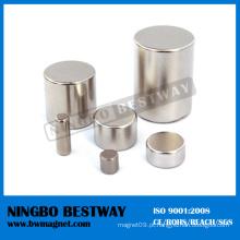 N48 sinterizado NdFeB Cilindro Magnet