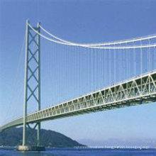 Wz- B029 Single Bridge Crane Install in Light Steel Structure Workshop