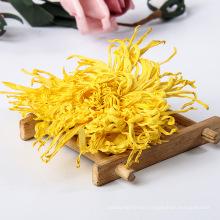 Golden Silk Chrysanthemum Flowers Tea