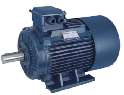 NEMA Standard Series Three Phase Asynchronous Electric Motor
