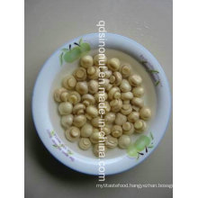 Canned Champignons Whole in Brine with Nice Size, Colour, Taste (HACCP, ISO, HALAL, KOSHER, BRC, FDA)