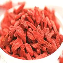 Fruta famosa de la fruta goji de la comida sana de Sepical China en China