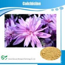 GMP завод поставка натуральных растительных экстрактов колхицин