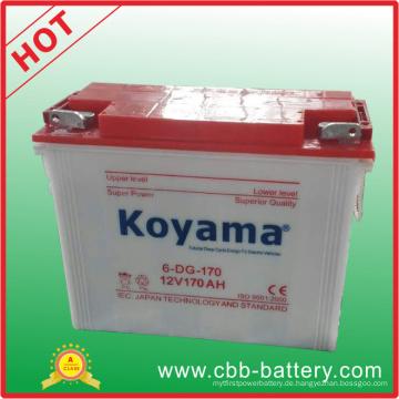 Gute Qualität Elektrische Dreirad-Röhrenbatterie 12V 170ah
