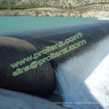 Custom Colorful Rubber Dam to Singapore
