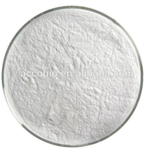 Food Ingredients Food Additive Natamycin
