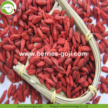 Factory Supply Fruit Gezonde variëteit Goji Berry