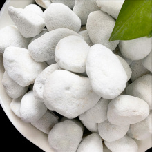 Hydroponic Plants Expanded Perlite Agriculture