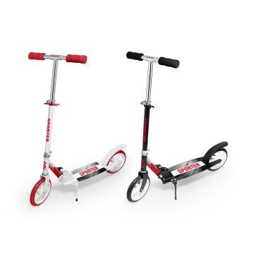 2016 New Style Adult Scooter für Exportmärkte (BX-2M001-L)