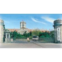 portão deslizante (aço inoxidável)