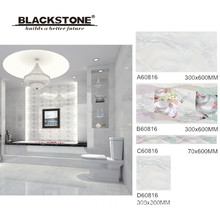Ceramic Wall and Floor Tile with Inkjet Printing 300X600 (A60816)