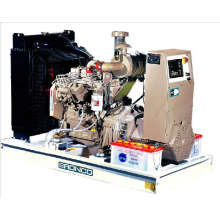 Diesel Generators (BN-40DC)