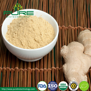 High quality wholesale natural Organic dried ginger powder