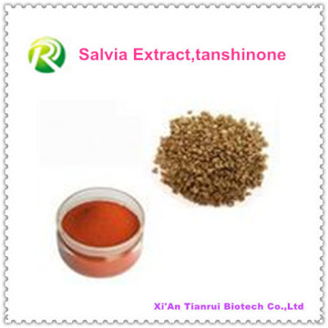 Poudre d'extrait de Salvia 100% naturelle Tanshinone