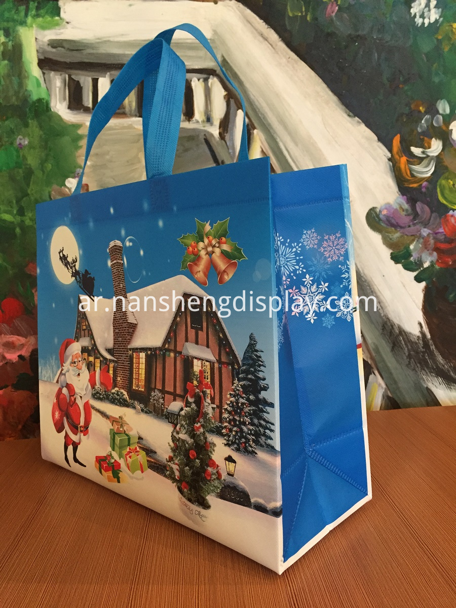 Christmas Gift Bag Packs