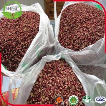 Especiaria especial da colheita de 2016 / cinza espinhosa chinesa / pimenta vermelha chinesa