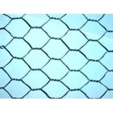 Malha de arame hexagonal em PVC