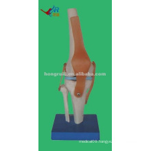 HR-111 natural Life-size Mini Skeleton artificial joint Model