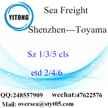 Shenzhen Port LCL Consolidation To Toyama