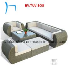 F -Outdoor Furniture Garden Furniture Rattan Sofa (CF701)