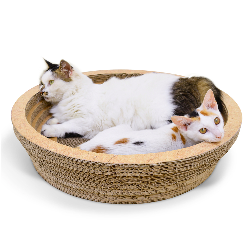 Bowl type of cat litter-cat toy