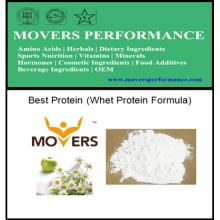 Meilleure formule de protéine de lactalbumine de protéine de bodybuilding de vendeur