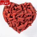New fresh distributor health benefits goji berry