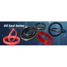 New Good Quality Vc Oil Seals