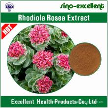 Extrait de Rhodiola Rosea Rosavins totaux 3%