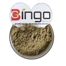 100% Pure Natural Mint Flavor Leaf Powder Extract