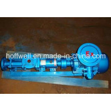 G Cast Iron Helical Rotor Pumps